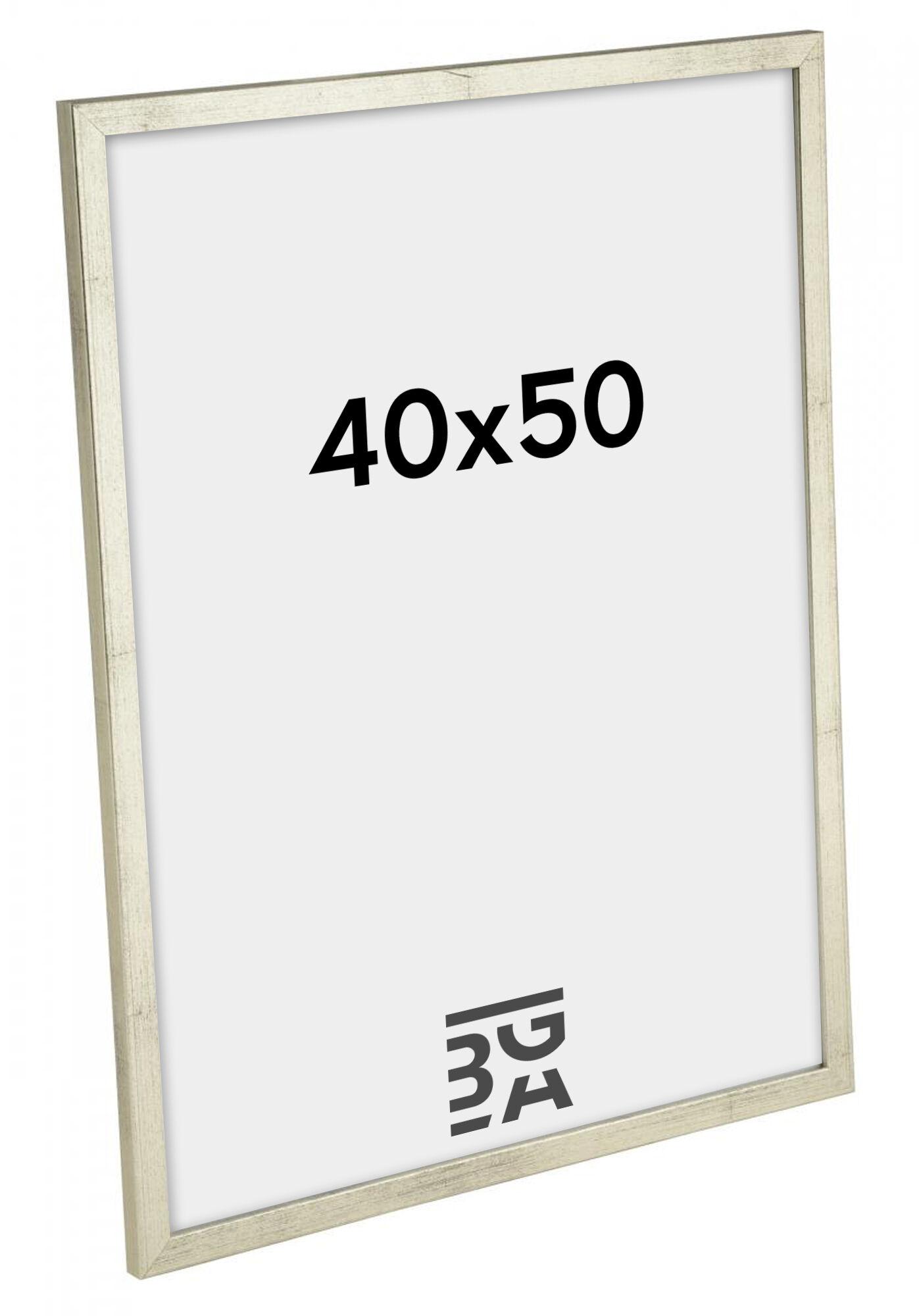 Estancia Galant Hopeanvärinen 40x50 cm
