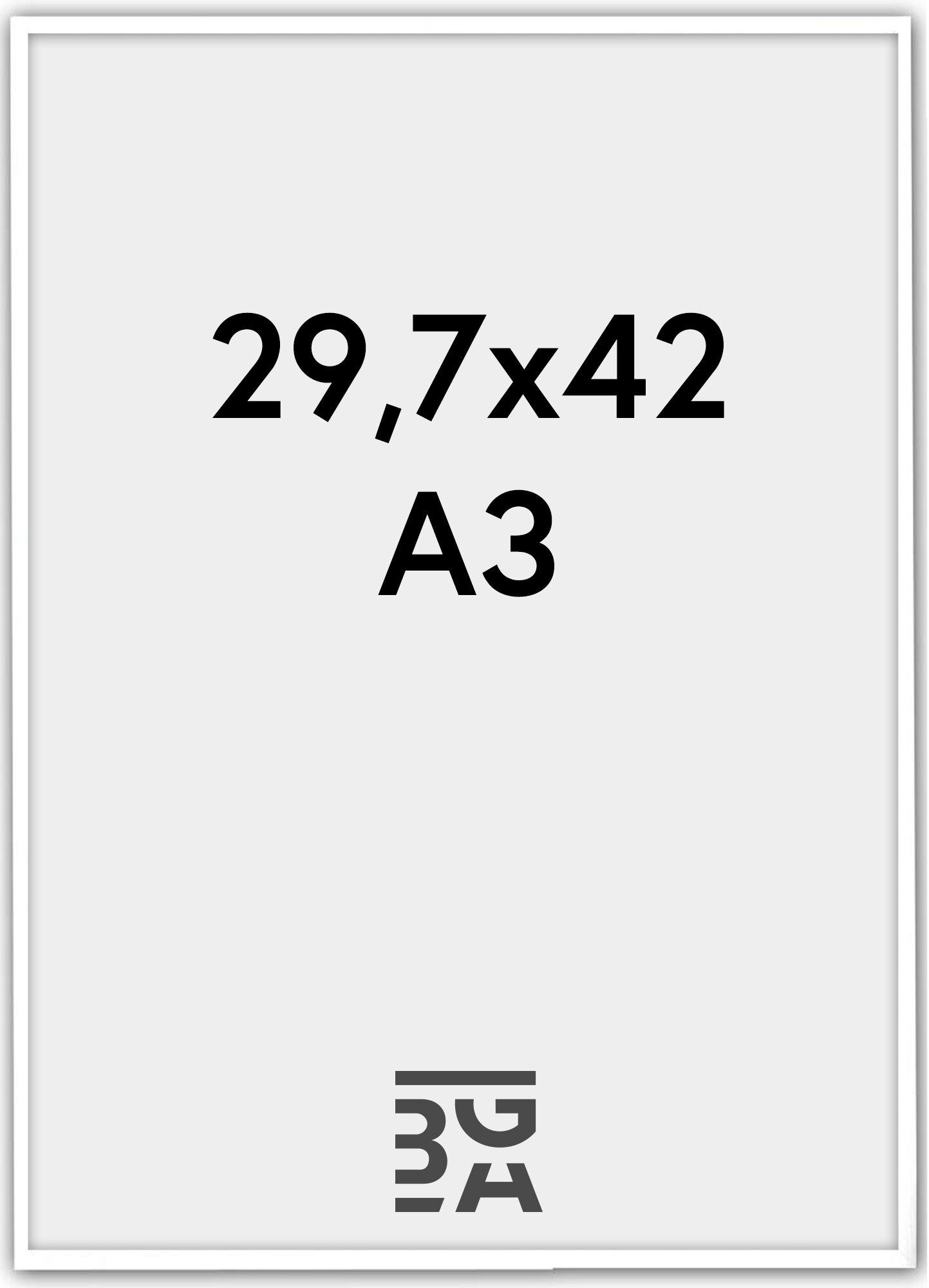 Estancia Galant Pleksilasi Valkoinen 29,7x42 cm (A3)