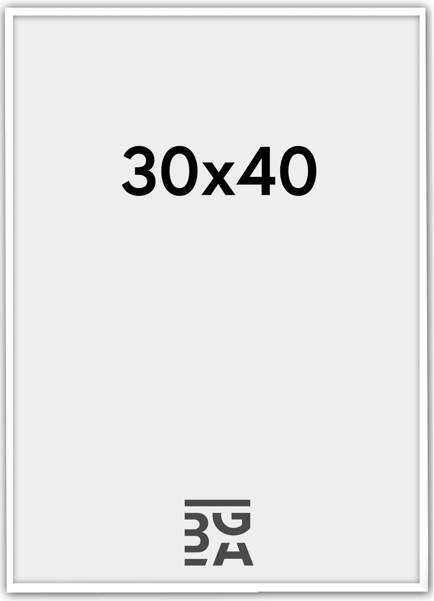 Estancia Galant Pleksilasi Valkoinen 30x40 cm