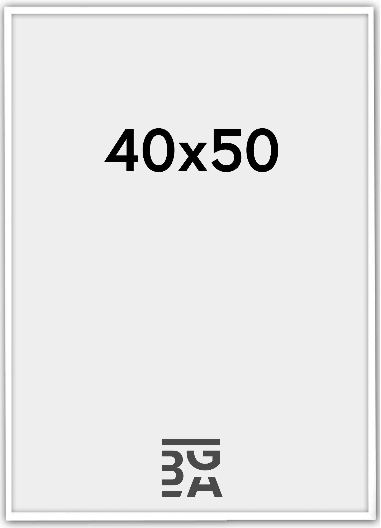 Estancia Galant Pleksilasi Valkoinen 40x50 cm