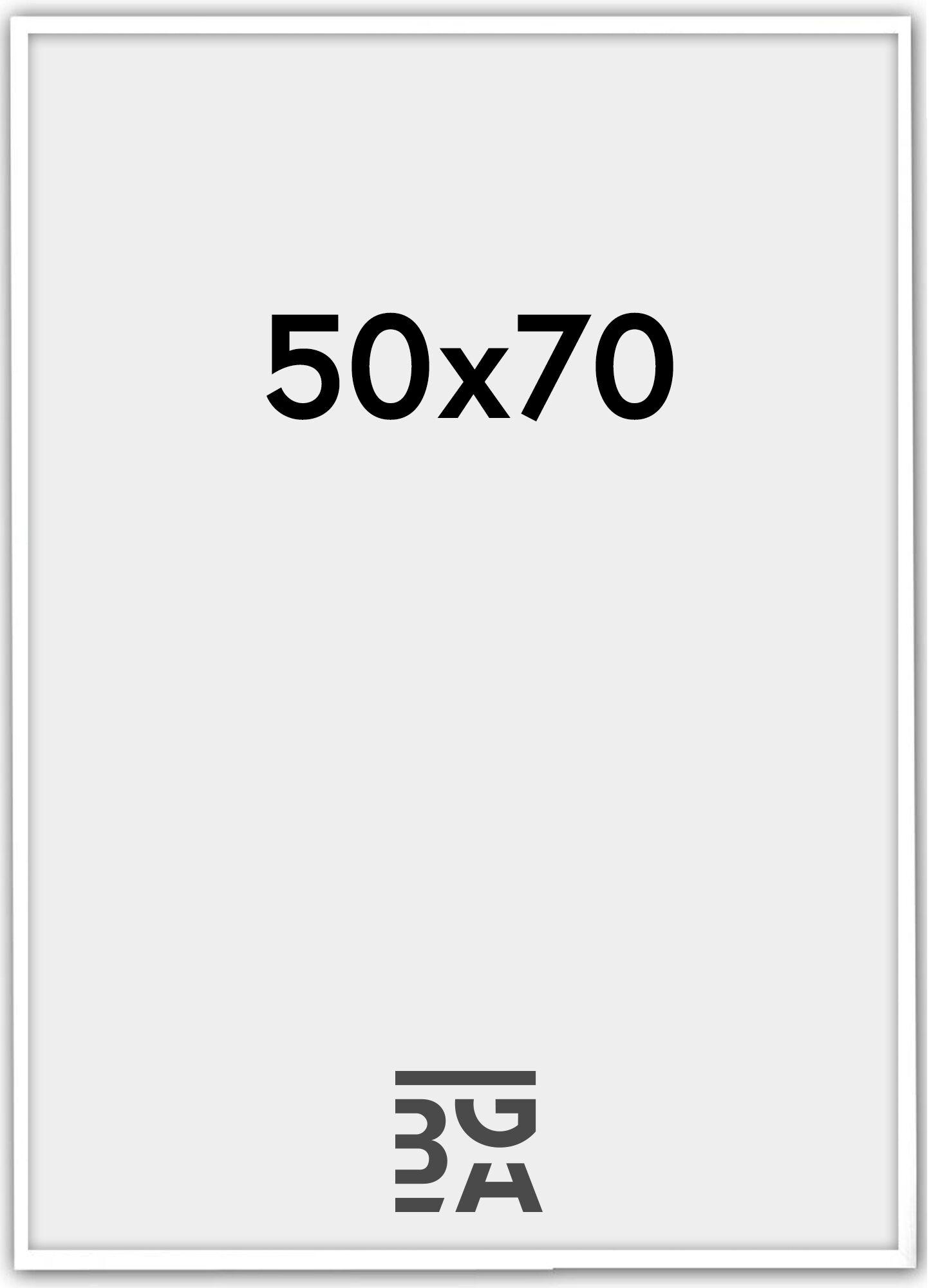 Estancia Galant Pleksilasi Valkoinen 50x70 cm