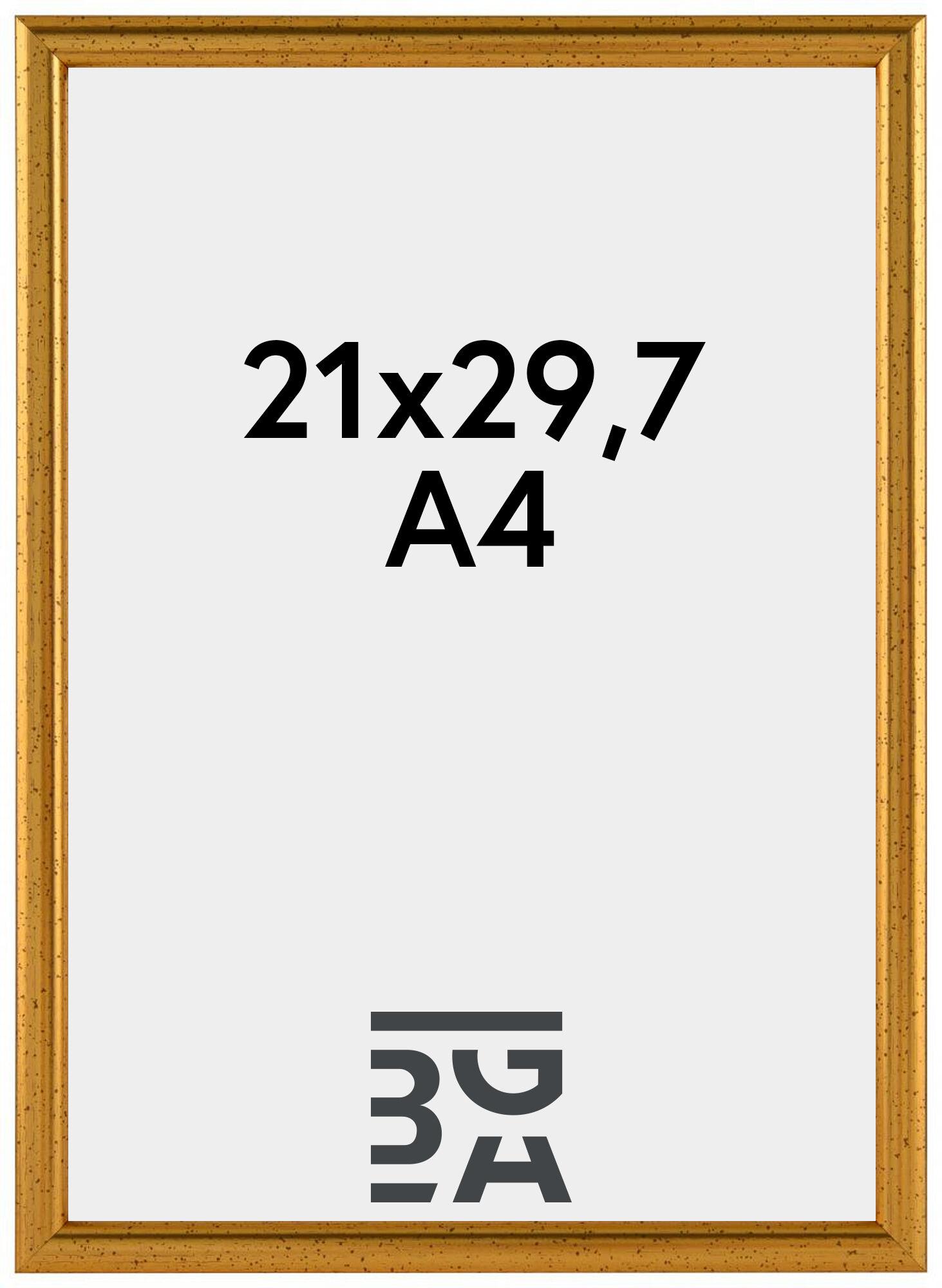 Newline Kullanvärinen 21x29,7 cm (A4)