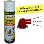 protecta  PROTECTA Aérosol Anti Guêpes - Frelons Longue Portée - 750 ml... par LeGuide.com Publicité