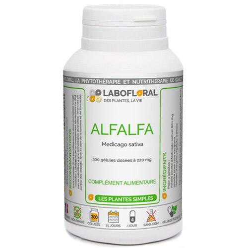 PHYTAFLOR Alfalfa plante Phytaflor - . : 1000 gélules