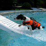 Skamper Ramp   Rampe de piscine pour chien - Skamper Ramp   Cette rampe... par LeGuide.com Publicité