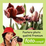 fotocompil  FotoCompil Poster 40x60 Premium Mat Posters photo XXL papier... par LeGuide.com Publicité