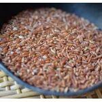 guayapi  Guayapi Riz rouge bio Plus riche en protéines que le riz blanc,... par LeGuide.com Publicité
