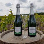 Champagne Deneufchatel Brut Tradition 2 X 75 Cl Champagne Deneufchatel... par LeGuide.com Publicité