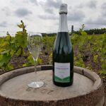 Champagne Deneufchatel Brut Tradition 1 X 75 Cl Champagne Deneufchatel... par LeGuide.com Publicité