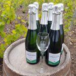 Champagne Deneufchatel Brut Tradition 6 X 75 Cl Champagne Deneufchatel... par LeGuide.com Publicité