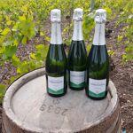 Champagne Deneufchatel Brut Tradition 3 X 75 Cl Champagne Deneufchatel... par LeGuide.com Publicité