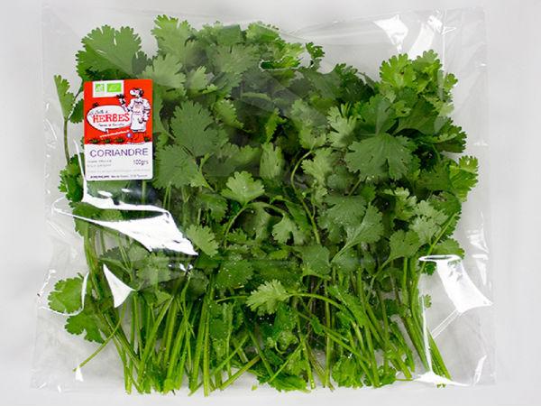 La Boite à Herbes Coriandre Fraîche - Sachet 50g