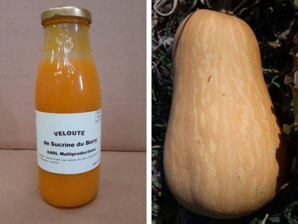 Multiproductions - Cédric Joliveau Velouté de Courge Sucrine du Berry : 1 bouteille de 50 cl