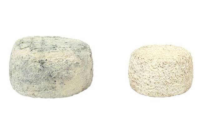 Fromagerie Seigneuret Cabris Fermier - Lot : 1 Jeune Et 1 Affiné
