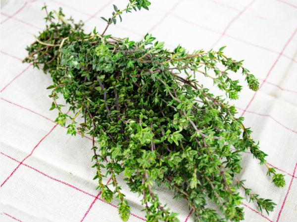 La Boite à Herbes Thym Frais - Sachet 50g