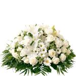 interflora  Interflora Bouquet Pure Coussin rond de roses et de fleurs... par LeGuide.com Publicité