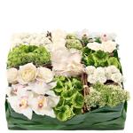 interflora  Interflora Bouquet Requiem Requiem est un coussin deuil carré,... par LeGuide.com Publicité