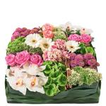 interflora  Interflora Bouquet Requiem rose Requiem rose est un coussin... par LeGuide.com Publicité