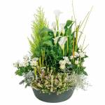 interflora  Interflora Bouquet Eden Coupe de plantes vertes et fleuries... par LeGuide.com Publicité