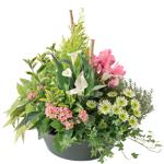 interflora  Interflora Bouquet Sérénité Coupe de plantes vertes et fleuries... par LeGuide.com Publicité