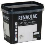 RENAULAC Peinture murale monocouche multi-support 0,75 L gris argent... par LeGuide.com Publicité