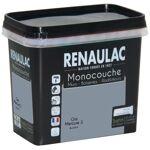 RENAULAC Peinture murale monocouche multi-support 0,75 L gris mercure... par LeGuide.com Publicité