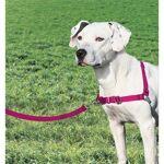 EASYWALK EASY WALK Harnais M - Framboise - Pour chien Harnais M - Une... par LeGuide.com Publicité
