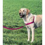 EASYWALK EASY WALK Harnais L - Framboise - Pour chien Harnais L - Une... par LeGuide.com Publicité
