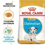 royal canin breed  Royal Canin Breed Royal Canin Dalmatien Puppy pour chiot... par LeGuide.com Publicité