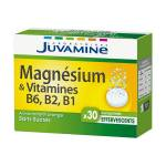 Juvamine Magnésium et Vitamine B6 B2 B1 30 comprimés effervescents Juvamine... par LeGuide.com Publicité