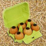 Voisin chocolatier torréfacteur Boîte à oeufs de Pâques - 6 oeufs coquilles... par LeGuide.com Publicité