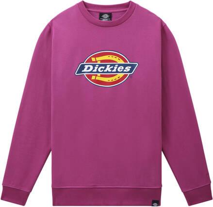 Dickies Pittsburgh Crewneck (Pink Berry)