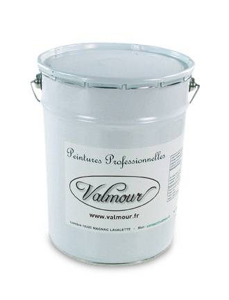 VALMOUR Primaire Surface Lisse VALMOUR