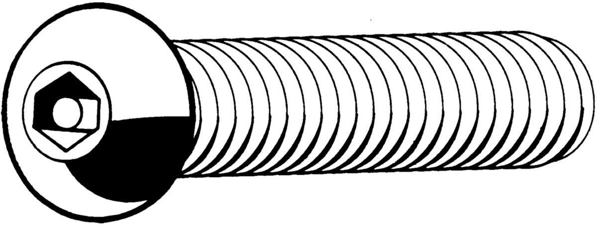 Fabory SECURITY Vis à métaux à tête bombée plat à six pans creux avec goupille Acier inoxydable (Inox) A2 M12X35