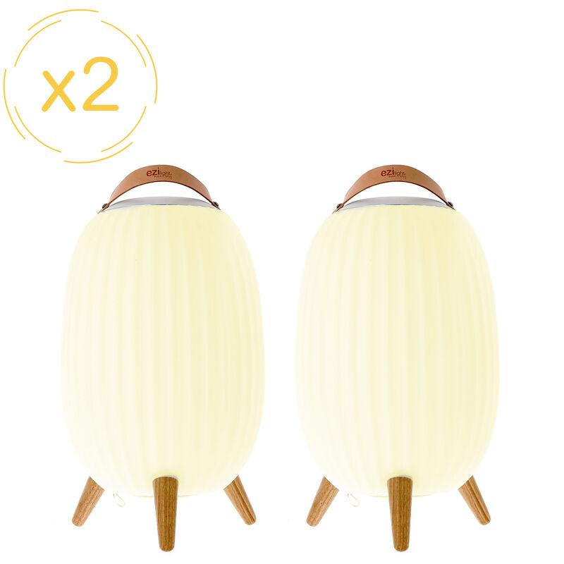E.ZILIGHT Lanterne nomade musicale EZIlight® Ambiant L - Pack de 2 lampes