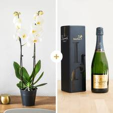 Interflora Candide et son champagne Devaux