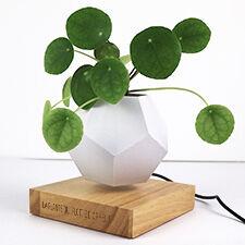 Interflora Pot flottant