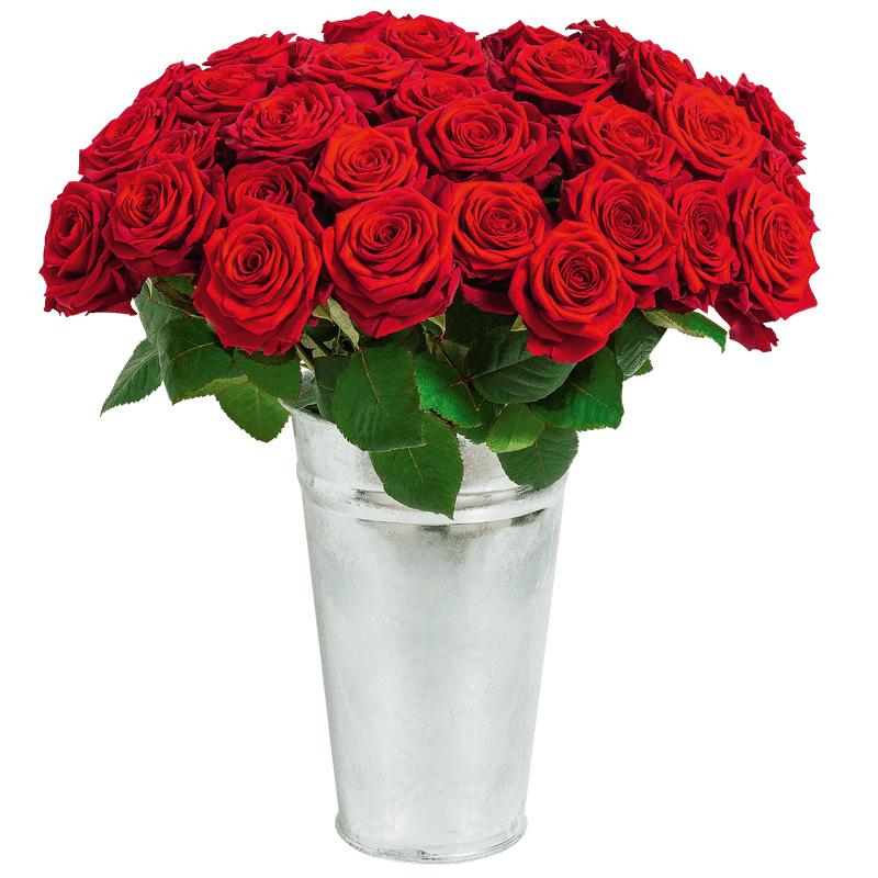 Interflora Fleurs Enterrement : Rose du dernier adieu - Collection Deuil Interflora