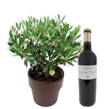 Interflora Olivier et son vin St Emilion Dourthe