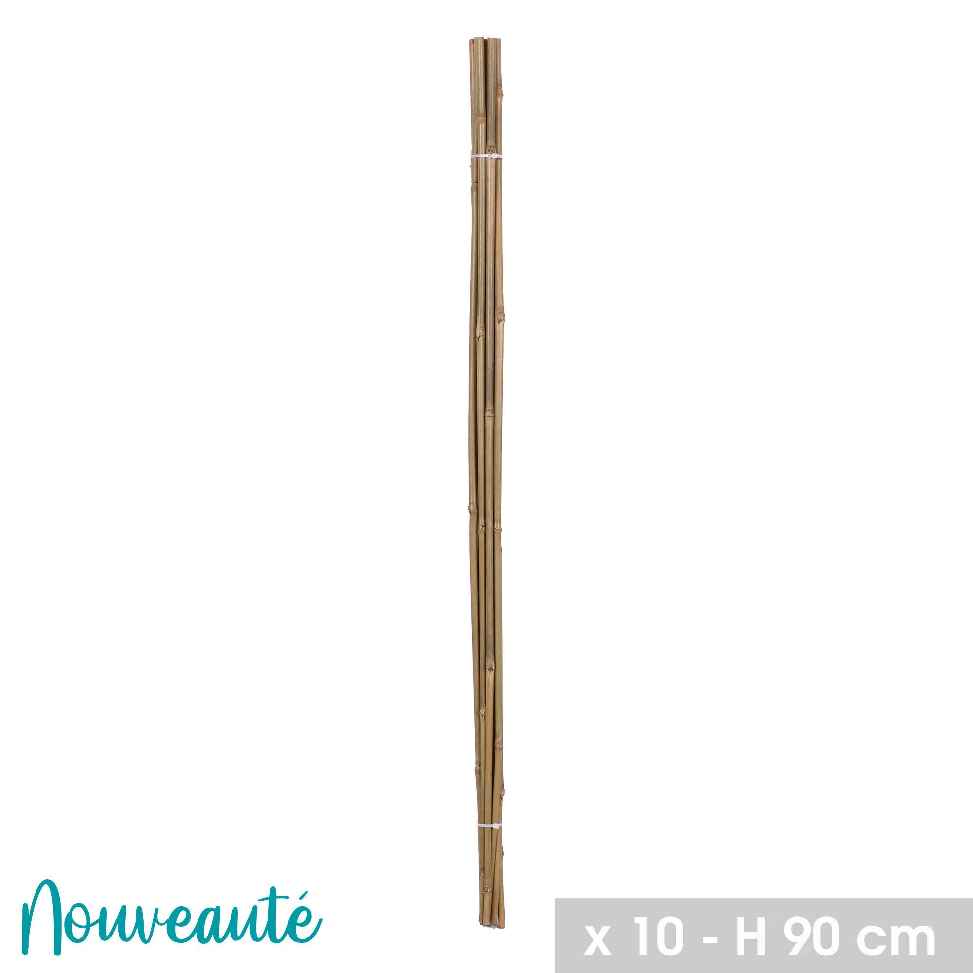 NOTRE SÉLECTION Lot de 10 tuteurs en bambou H.90 cm x 8-10 mm