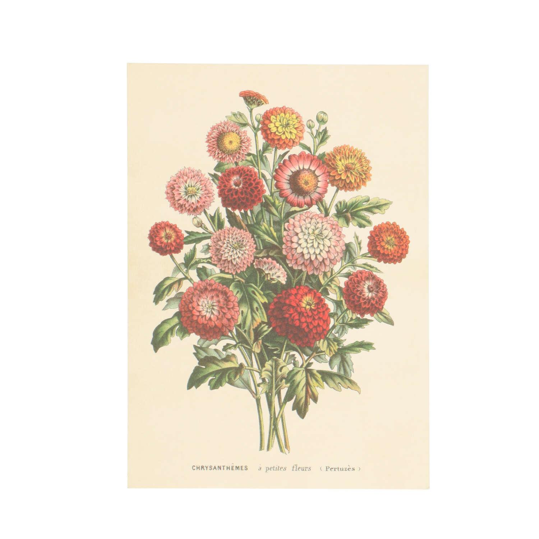 Dille&Kamille Carte, bouquet de crysanthèmes