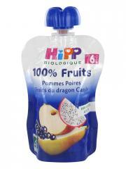 HiPP 100% Fruits Gourde Pommes Poires Fruits du Dragon Cassis dès 6 Mois Bio 90 g - Gourde 90 g