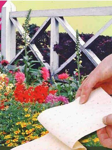 Casâme Tapis présemé de graines de fleurs