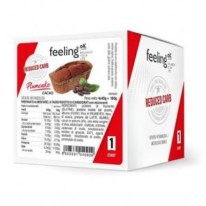 FeelingOk Gâteau FeelingOk PlumCake Start Cacao 180 g