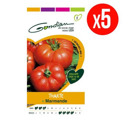 Gondian Lot de 5 sachets de graines de Tomate Marmande VR