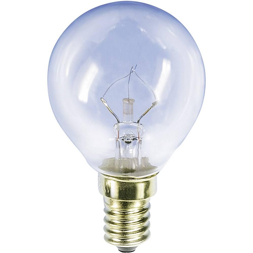 Barthelme 00781510 Ampoule de vélo 235 V 15 W EEC: E (A++ - E) clair 1 pc(s)