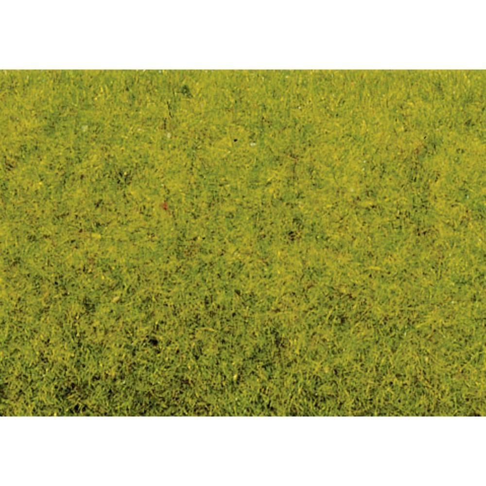 NOCH Herbage à répandre pré printanier NOCH 8300 vert clair 20 g