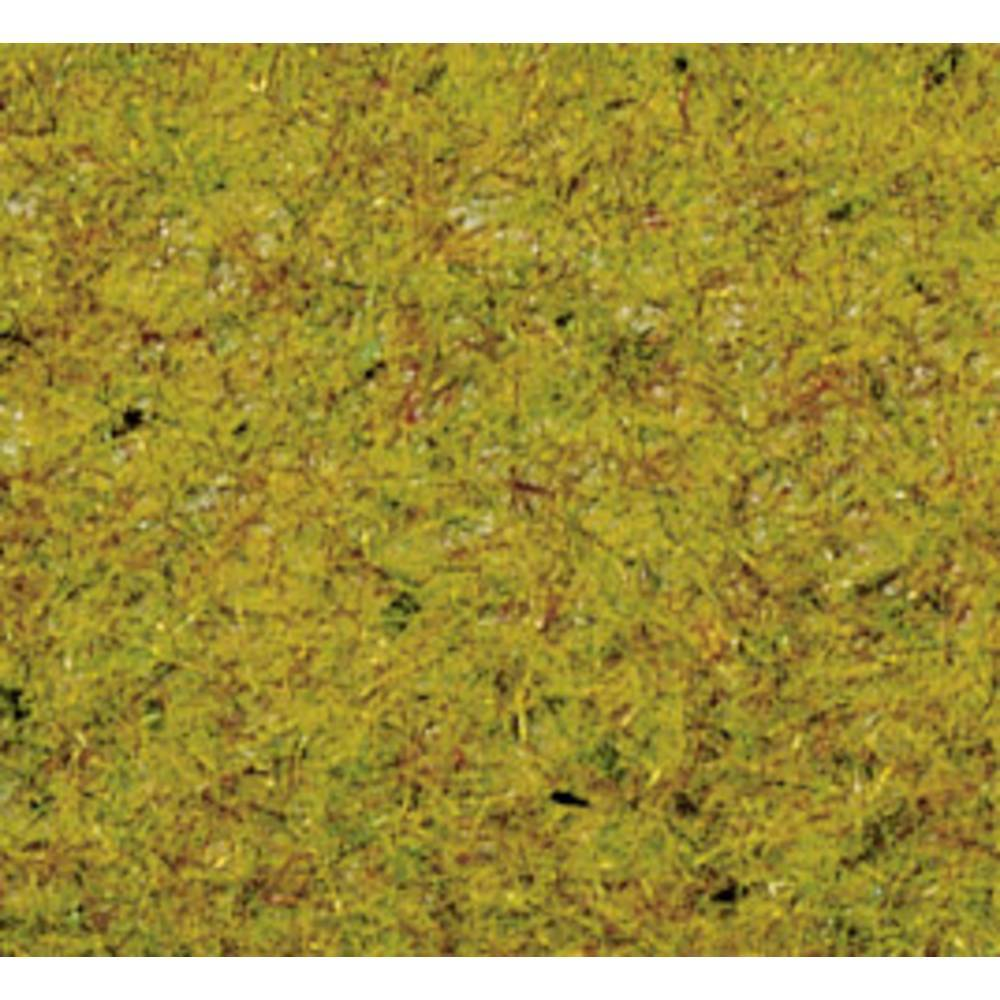 NOCH Herbage à répandre prairie dété NOCH 8310 vert moyen 20 g
