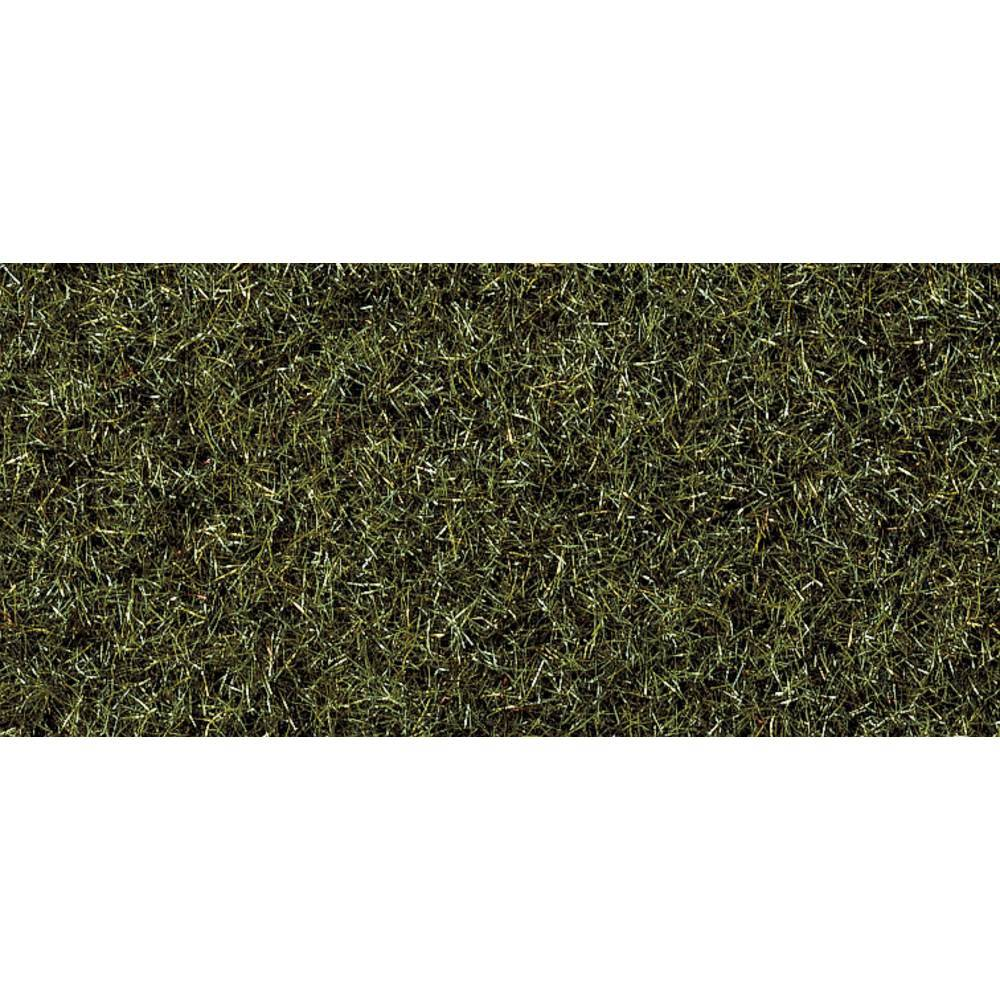 NOCH Herbage à répandre sol marécageux NOCH 8320 vert foncé 20 g
