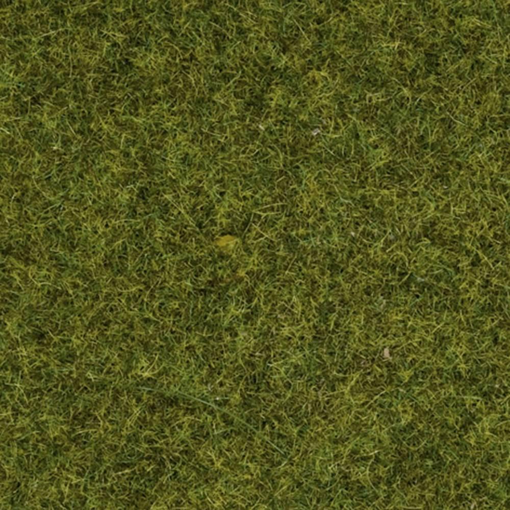 NOCH Herbage à répandre prairie NOCH 08312 prairie 20 g